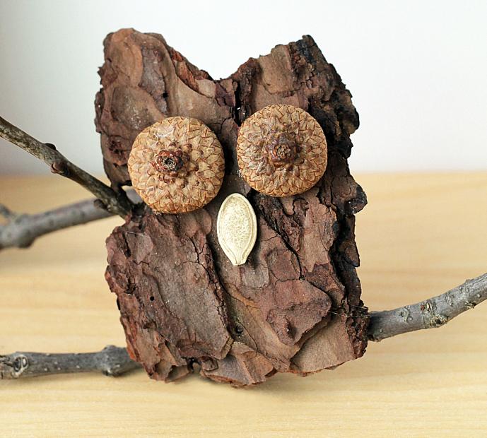 bark owl.jpeg