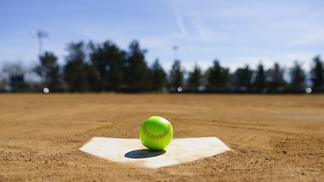 Interested in a Co-Ed softball league?