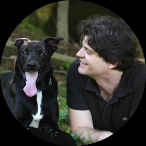 Dognition website