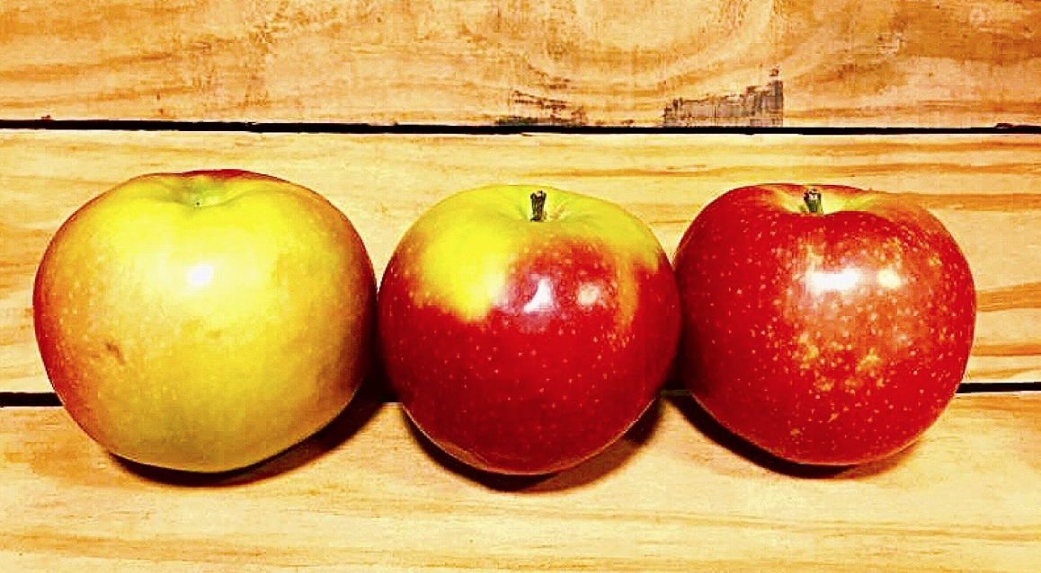 Apples are local produce for Nova Scotia and are easiest to get, even in the winter.