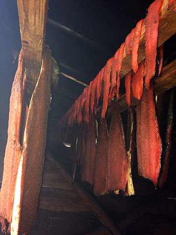 Jenny Cross's freshly harvested fish drying in her home in Haida Gwaii.  Source: Shelly Crack