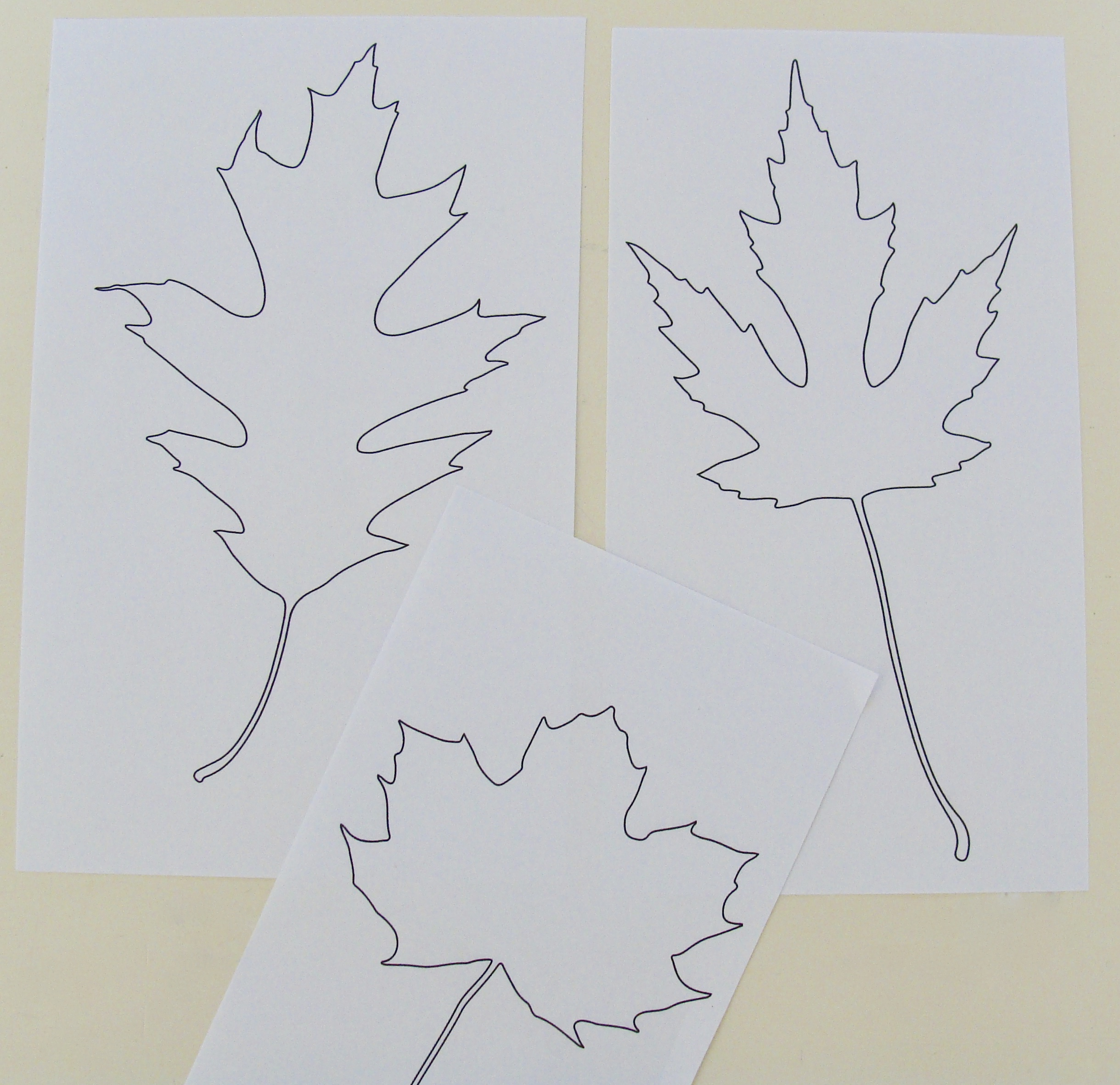 leaf cartoons for handwoven inlay