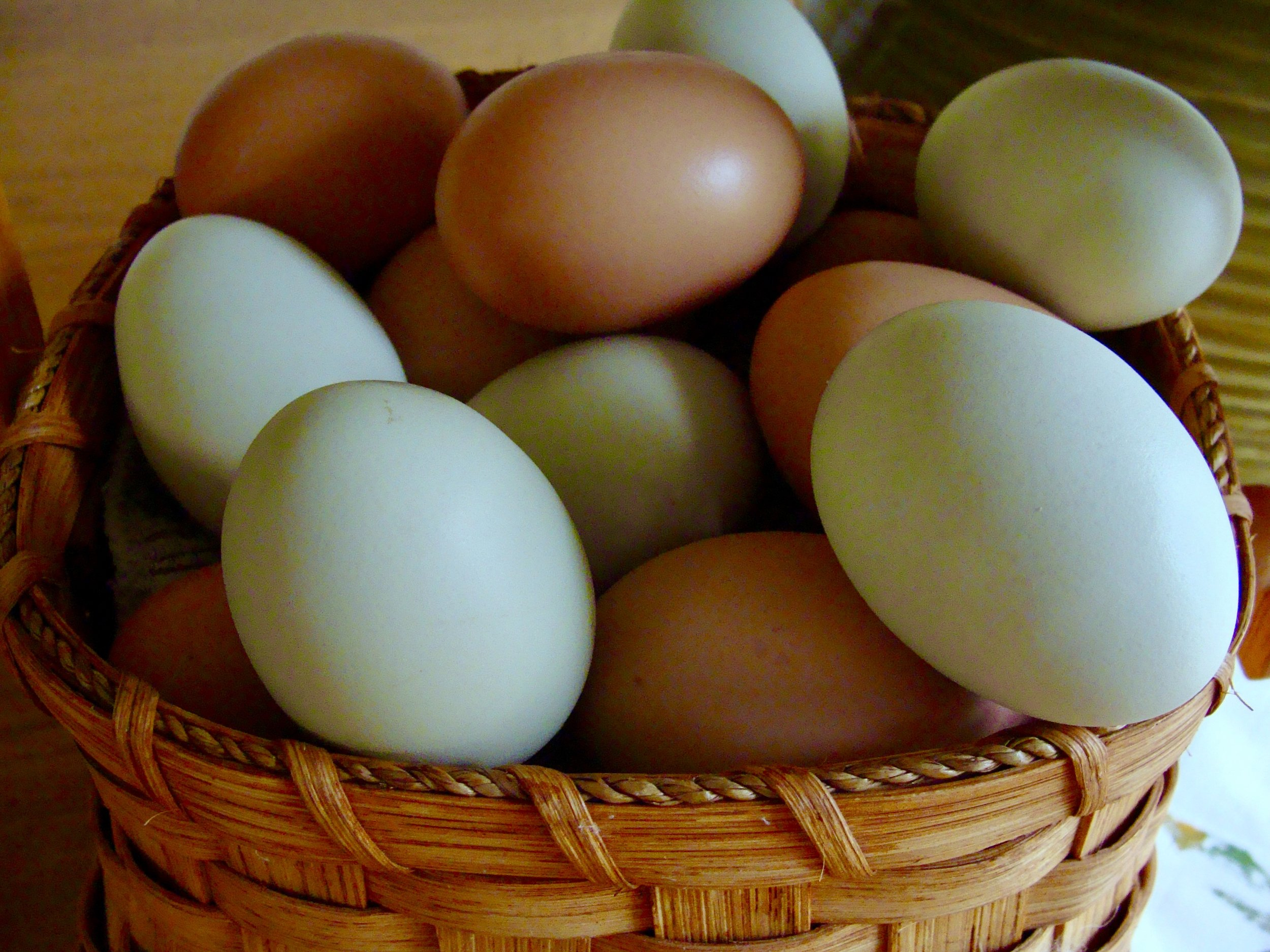 brown and green chicken eggs