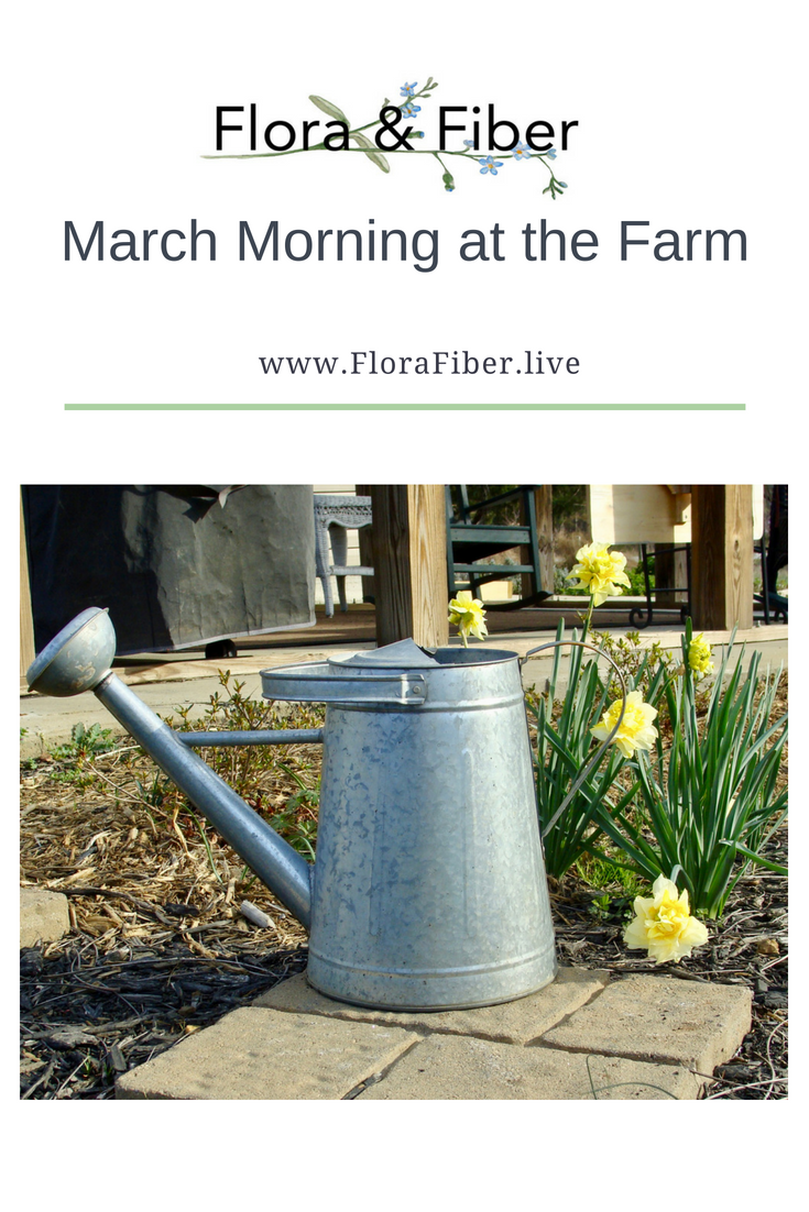 March Morning at the Farm post