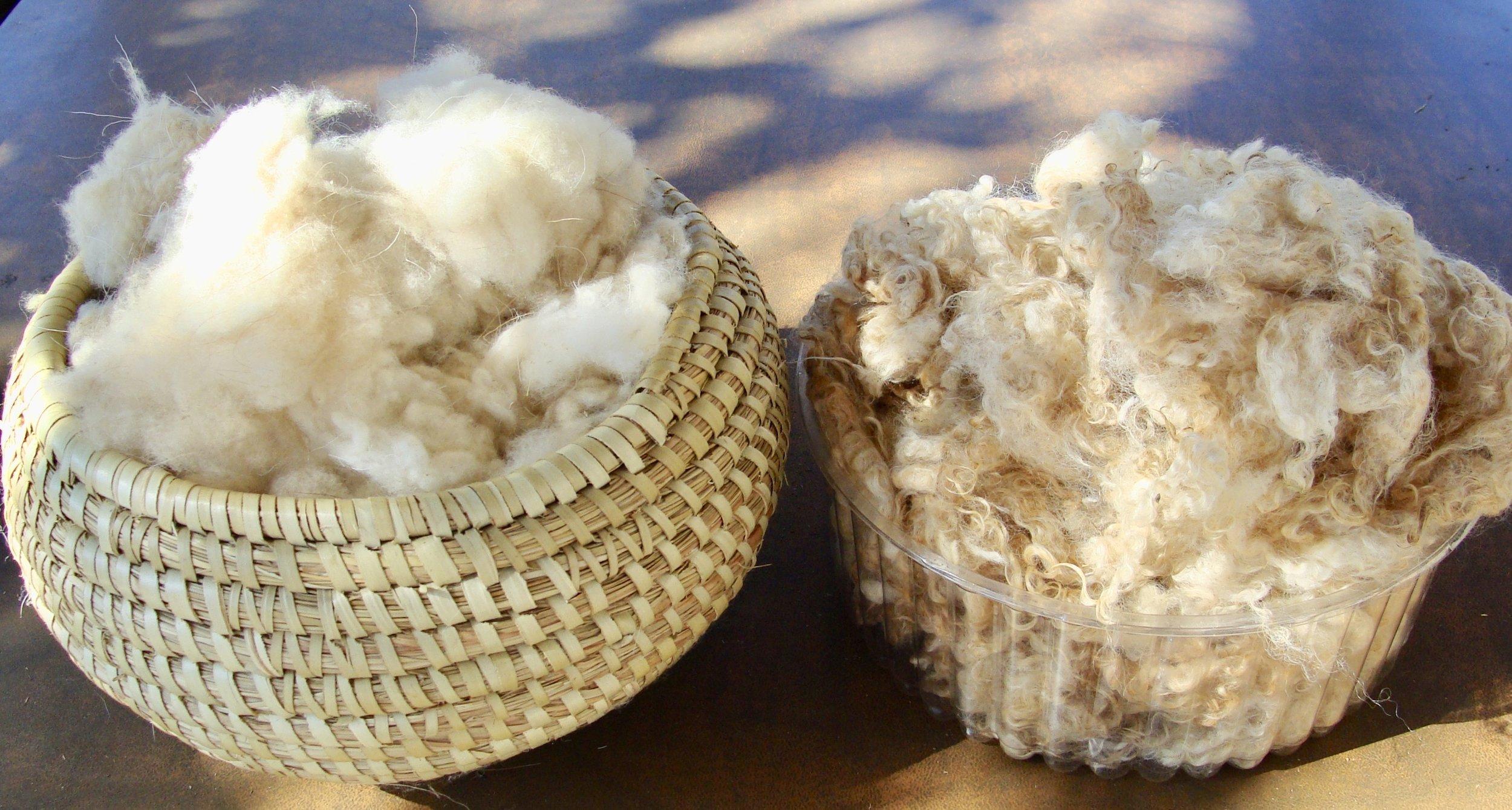 cashmere fiber (left) and mohair fiber (right)