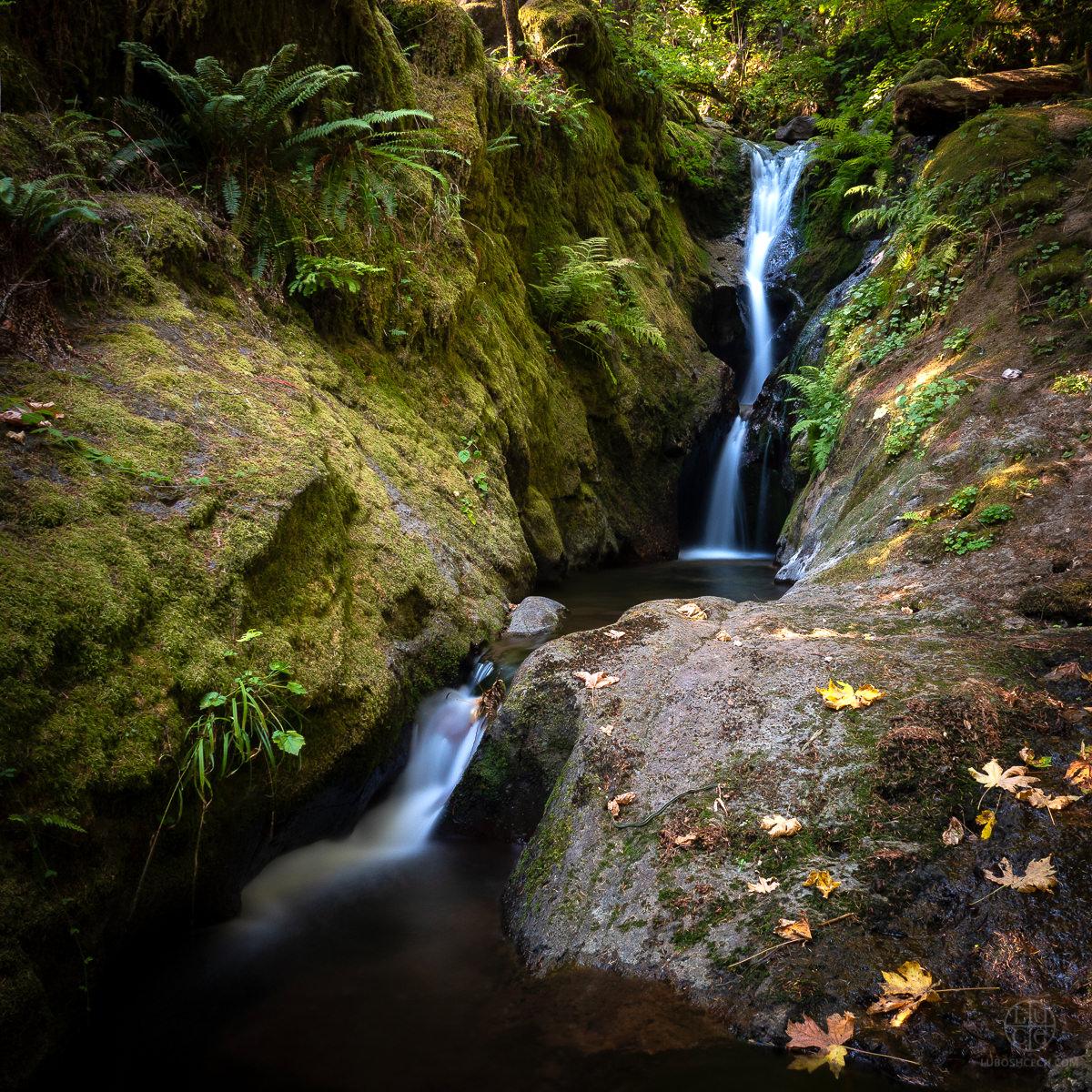 d-creek-.jpg