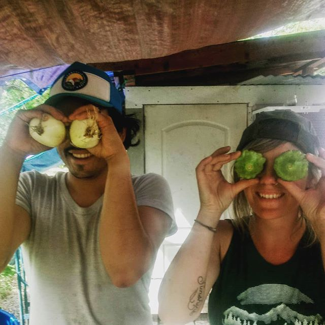 Another lovely day in the sun with onion eyes and squashnoculars aka @benji_1086 and @andyjoychase The aliens have landed.  #onioneyes #harvestdays #pattypan #sundrunk #arewehuman #urbanfarming #csa #chronicproduce #bustedandroidcamera