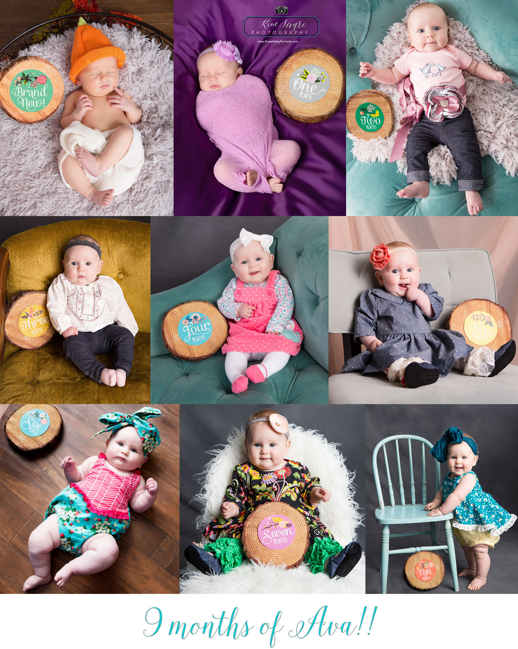 Baby's First Year of Portraits