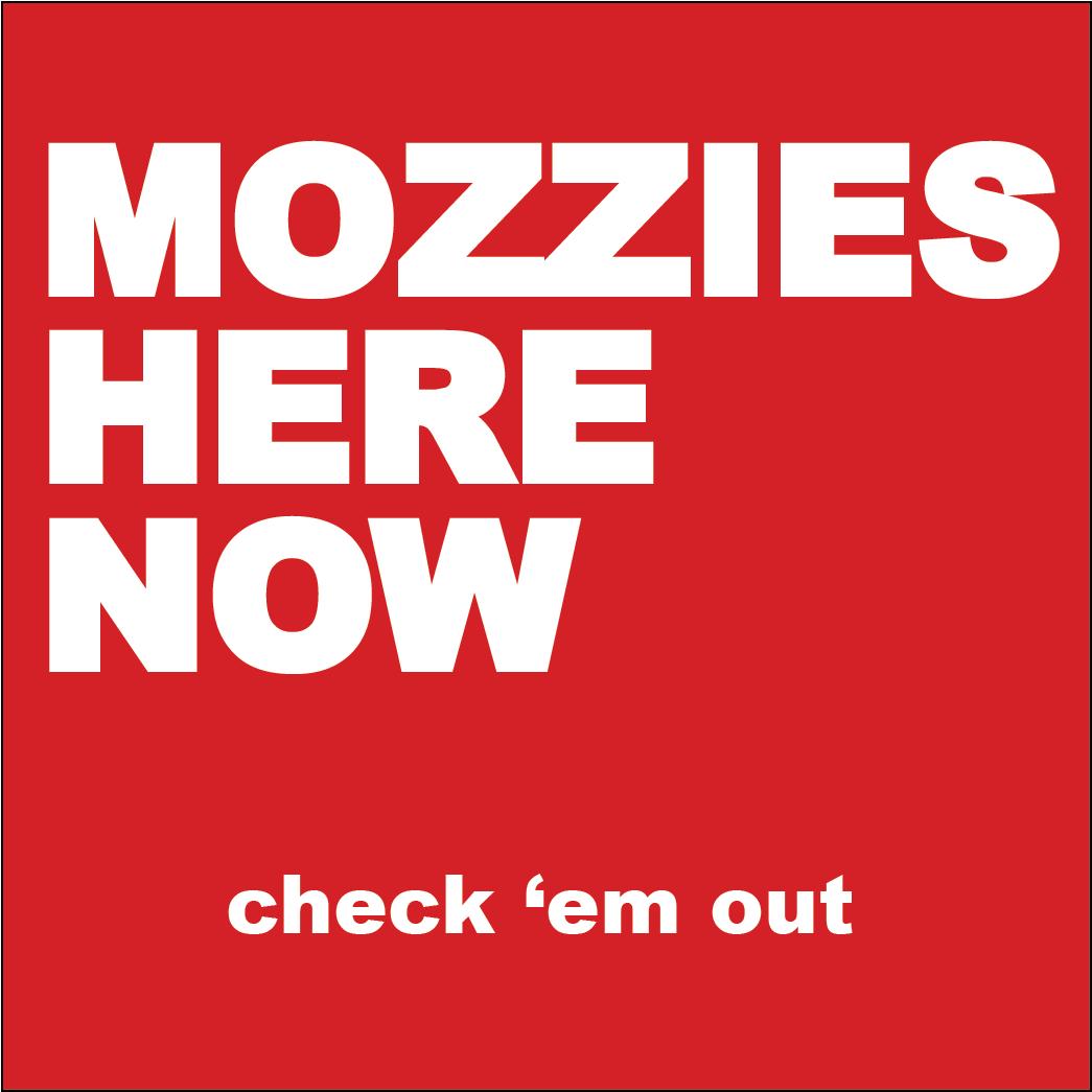 Mozzie Basic Kit