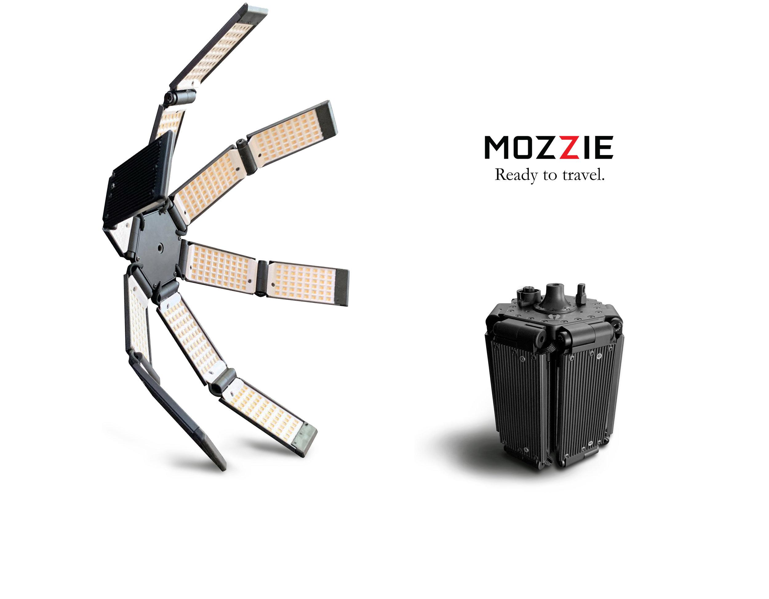 mozzie banner specs two.jpg