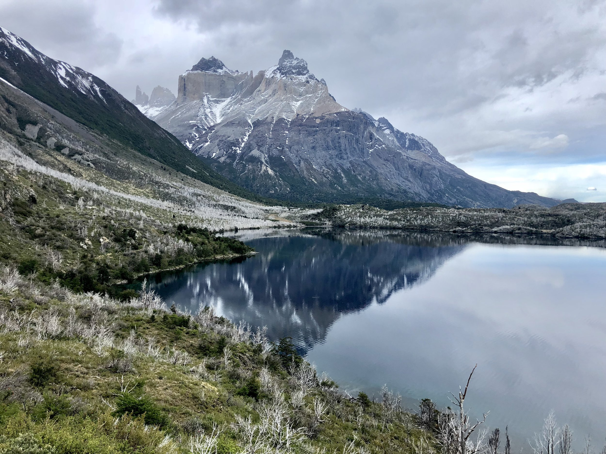 Lake reflection in Patagonia