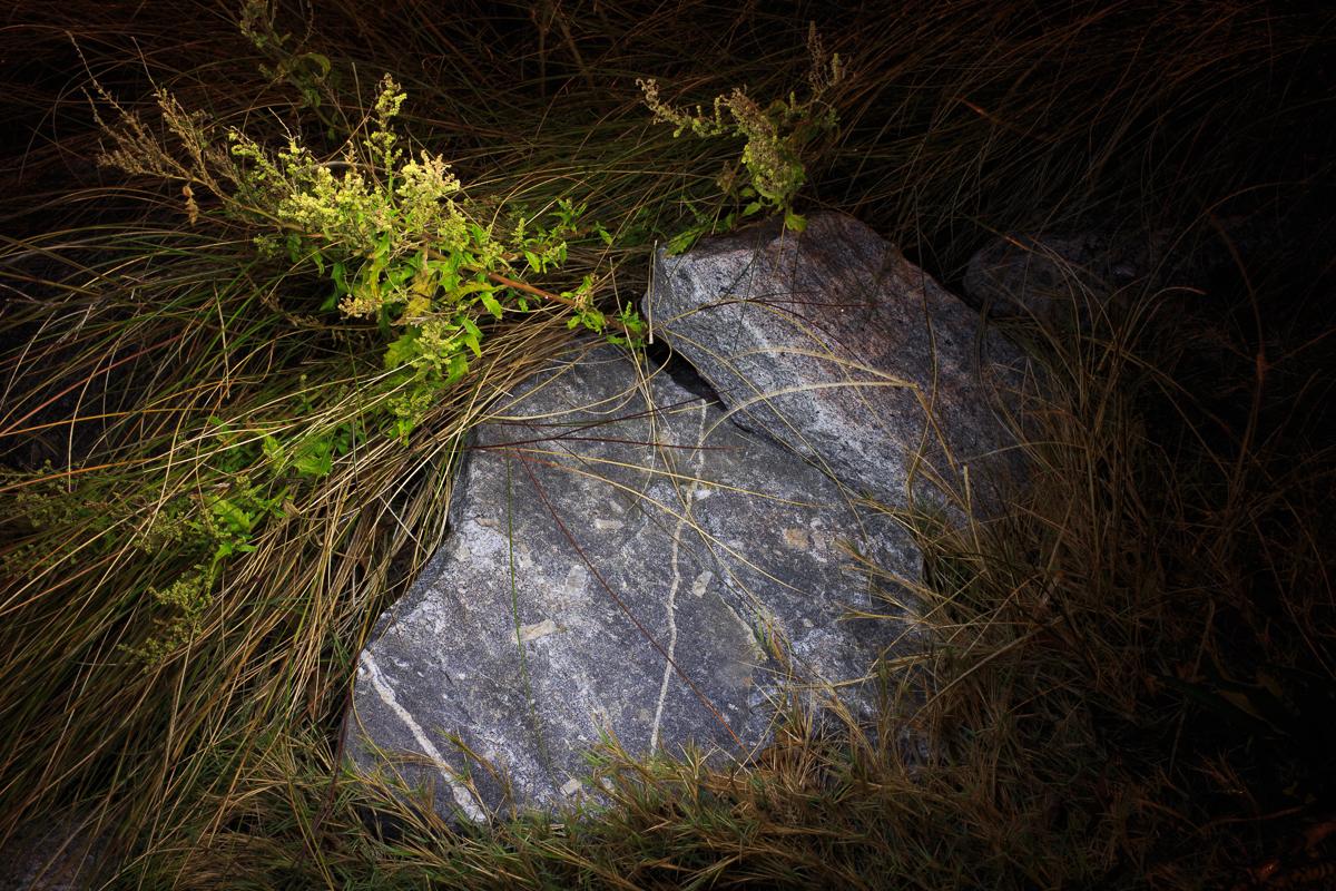 Jason-Stick_Night-Shift-9252.jpg