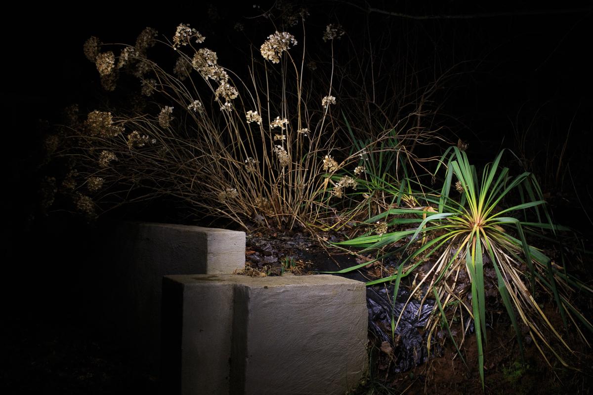 jason-stick-night-shift-1844.jpg