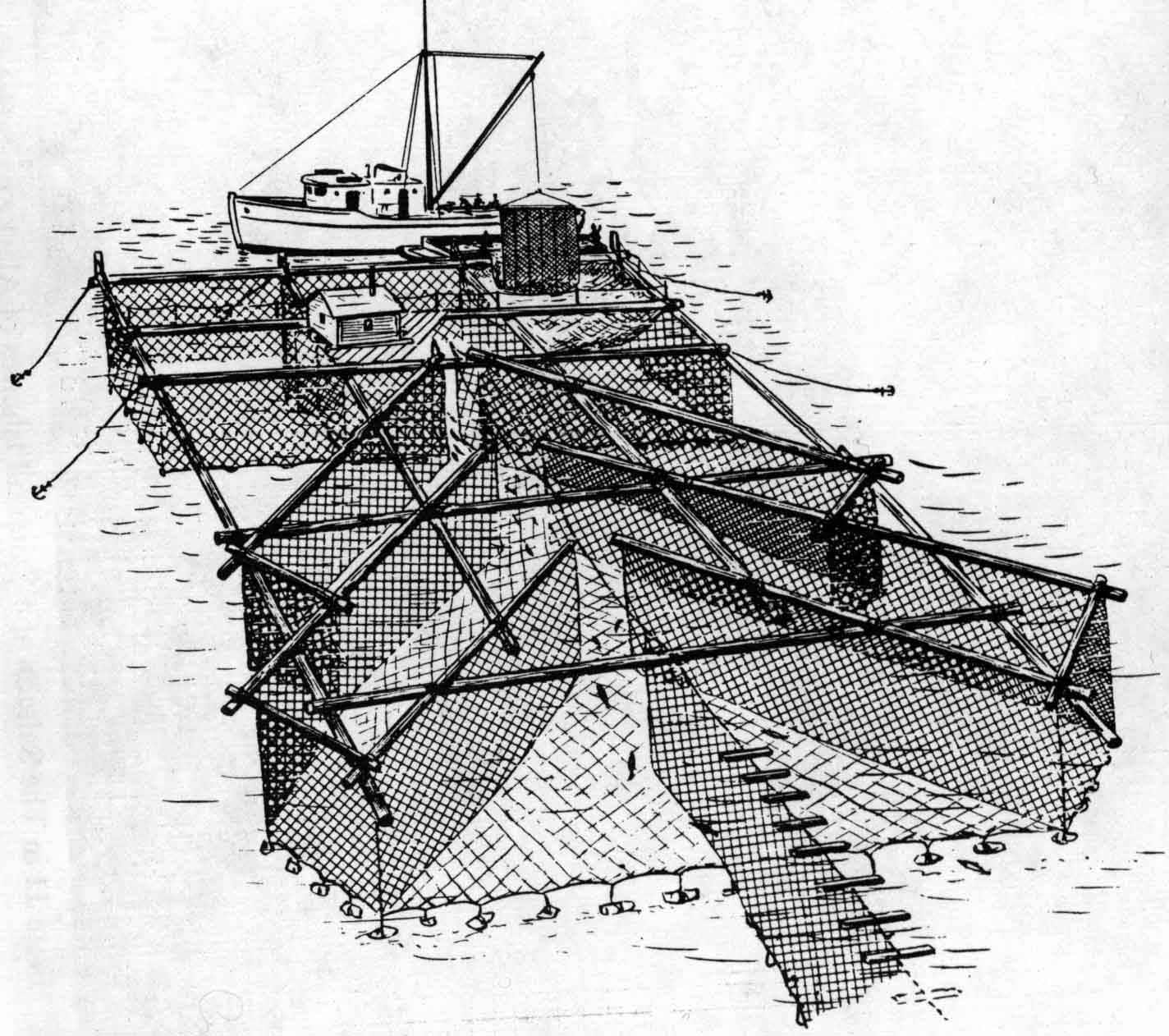 Floating salmon trap.  http://www.alaskool.org/projects/traditionalife/fishtrap/FISHTRAP.htm