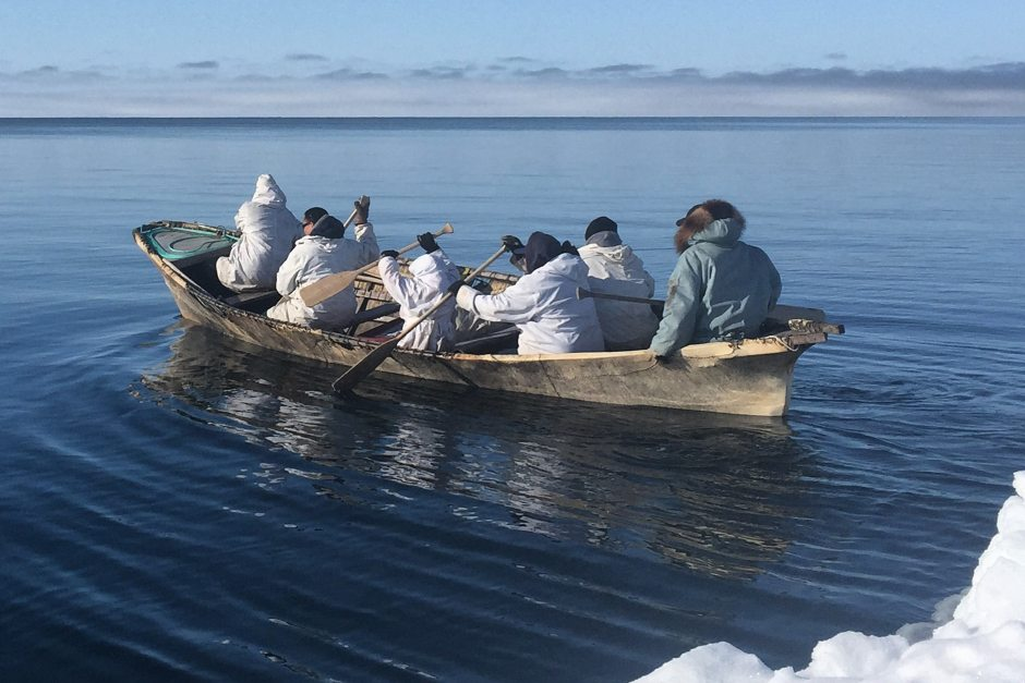 A whaling crew paddles out on a spring whaling hunt near Barrow on the northern coast of Alaska on May 6, 2015.  From:https://whalesandmarinefauna.wordpress.com/2015/05/31/alaskas-spring-whaling-season-a-success-despite-challenging-sea-ice-usa/