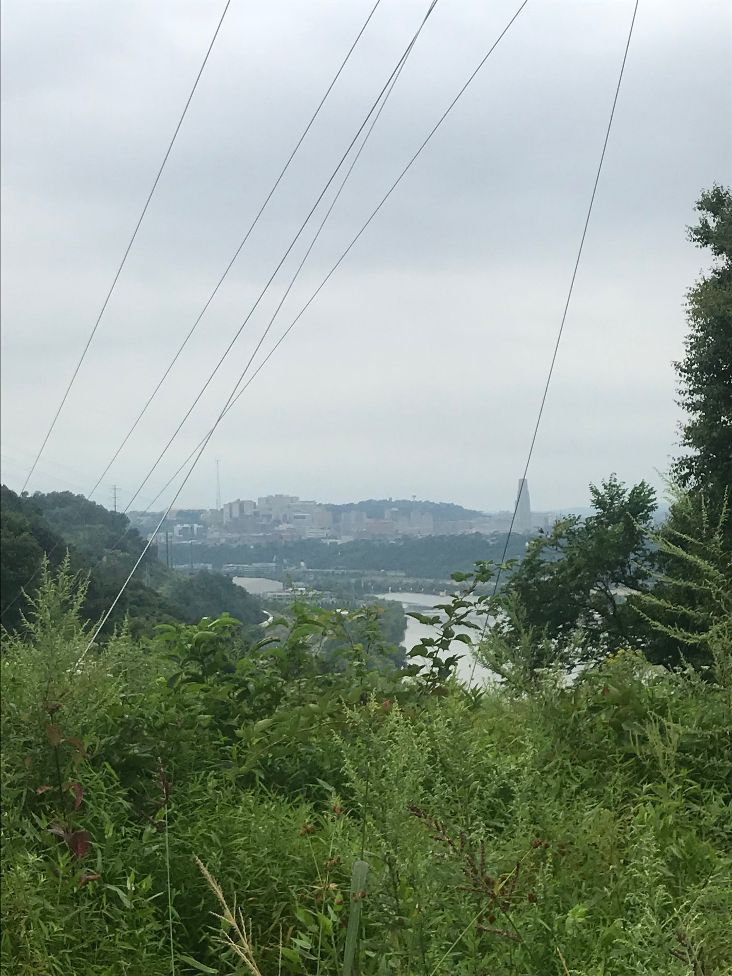 View from Hays Woods looking towards Oakland on the Monongahela River.