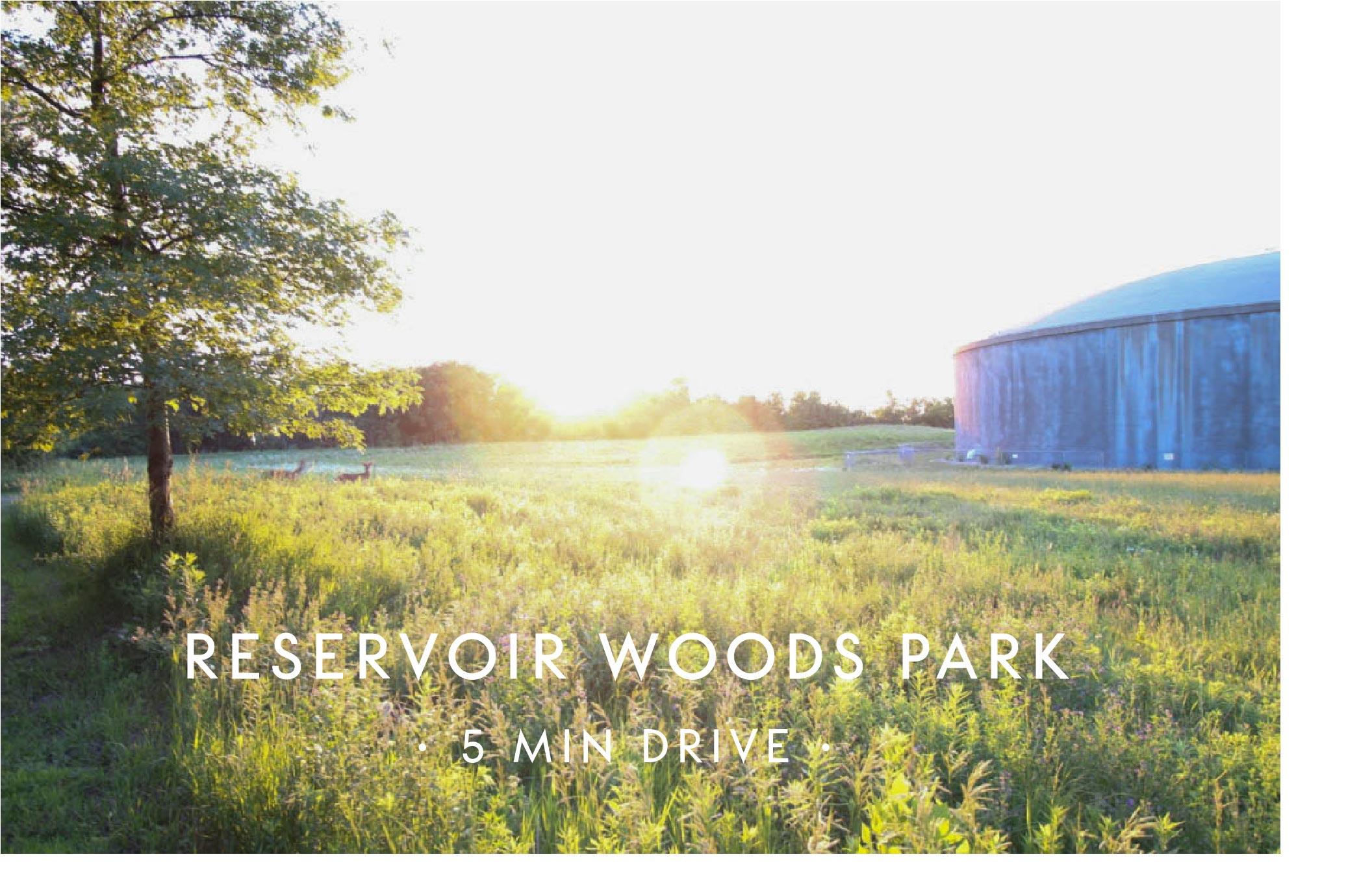 Reservoir Woods Park.jpg