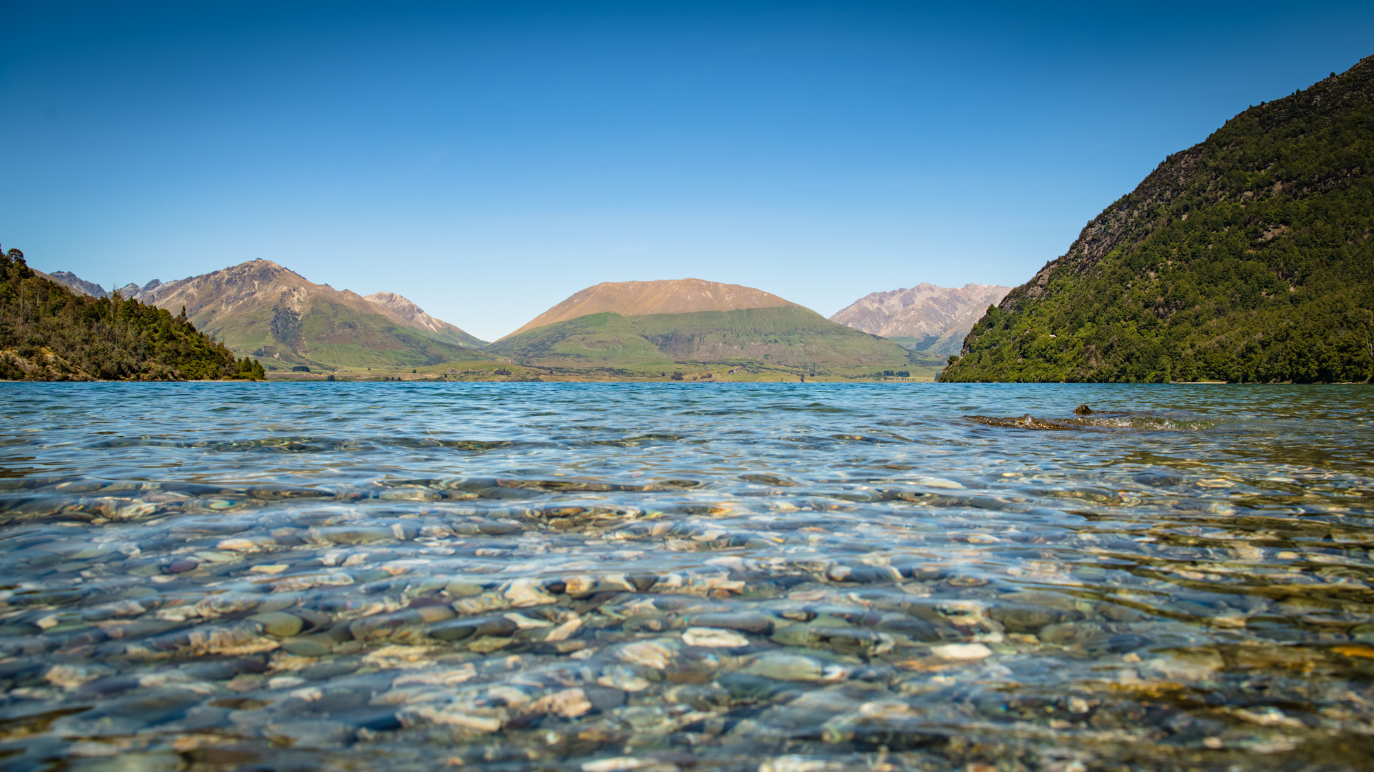 Bobs Cove - Walk through the Native Bush to access this 100% Pure NZ location