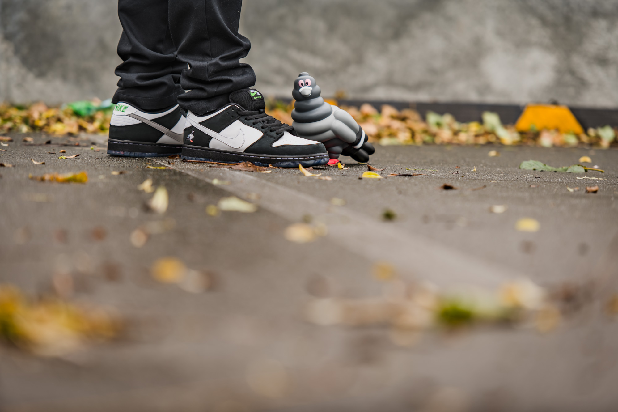 Nike SB Panda Pigeon finding its way home