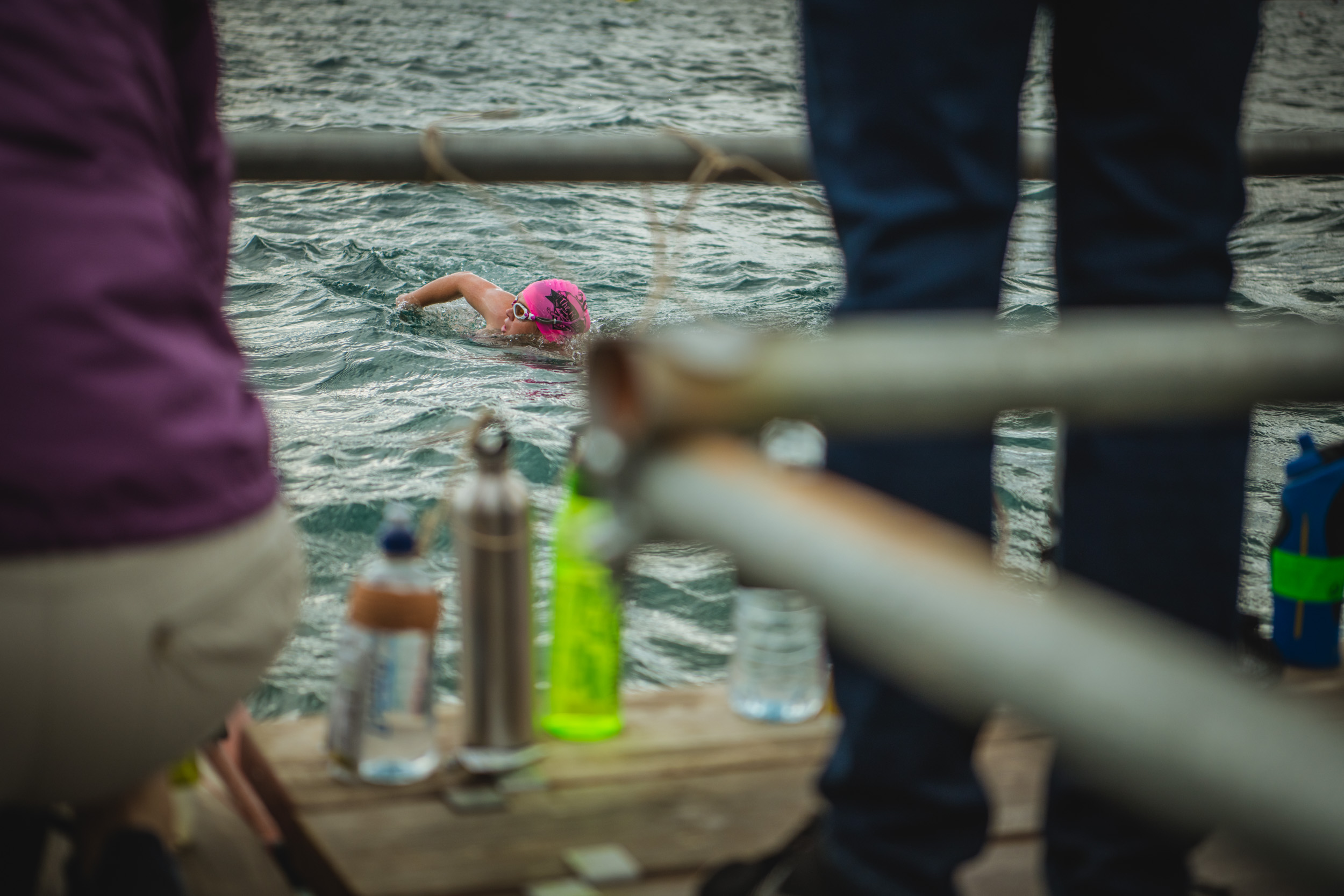 swimming in for a food break - Lake Wanaka Professional Event Photography