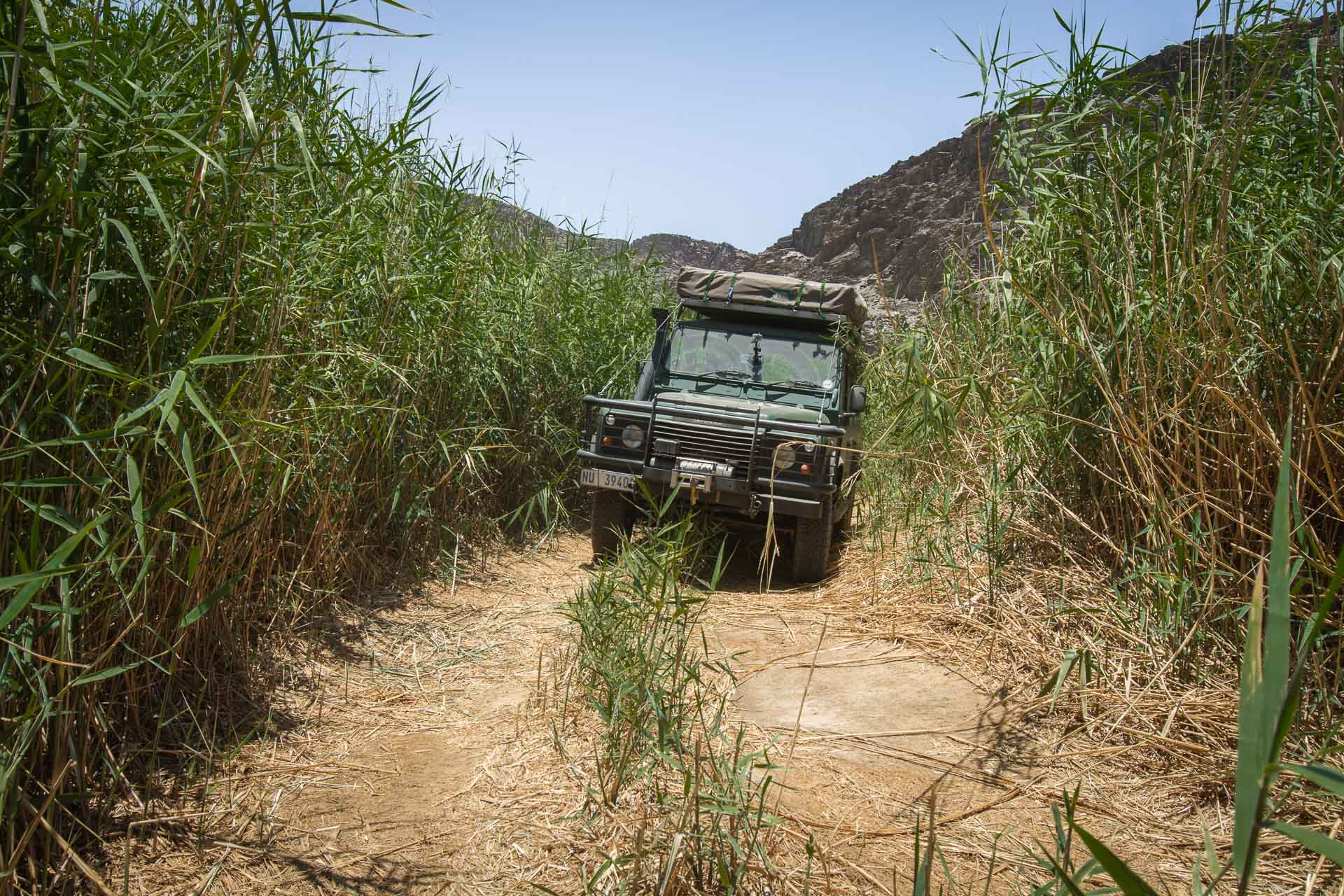 The Land Rover deep in the foliage of the Ugab River.