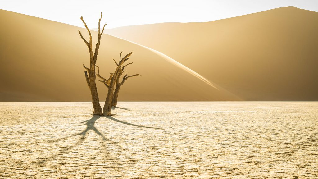 Midas Touch – Deadvlei, Namibia –1/100s at ƒ/8, ISO 100, Focal Length 33mm