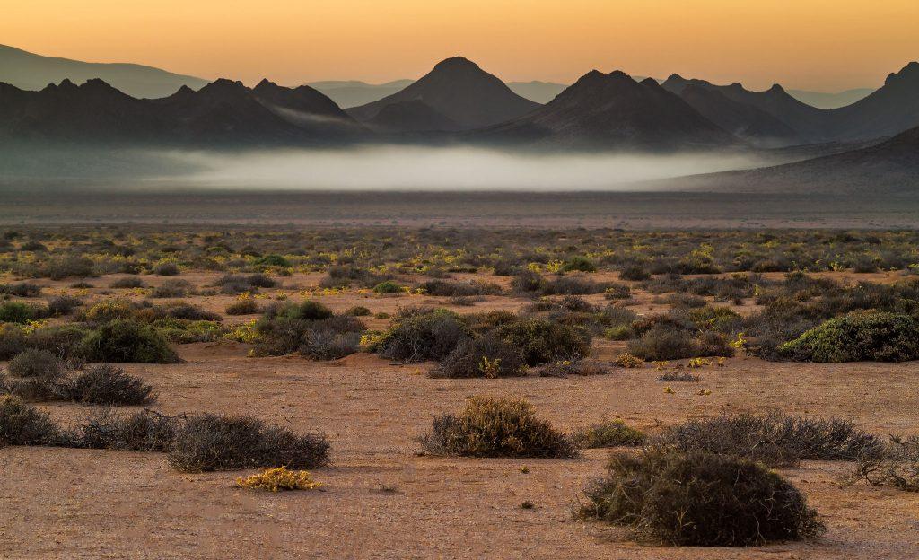 Mist in the valley near Tierhoek Camp