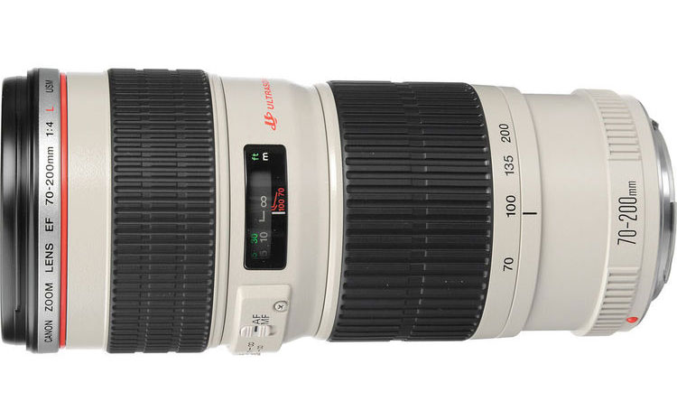 The Canon EF 70-200mm f/4L USM, the sharpest lens in my bag.