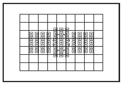 An illustration of a viewfinder showing how much of the frame is covered by the light meter. The grid pattern denotes the metered area and the 61 smallest squares the focal points. The centre circle shows the region encompassed by the Partial metering mode.