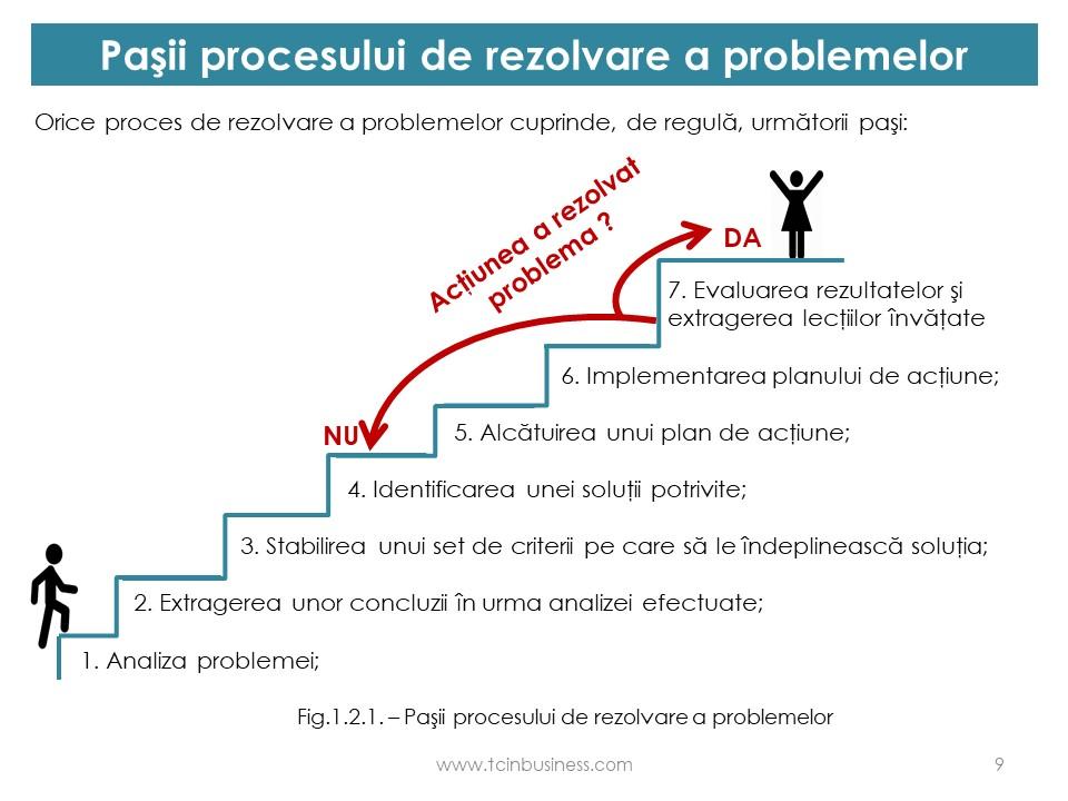 rezolvarea problemelor de vedere)