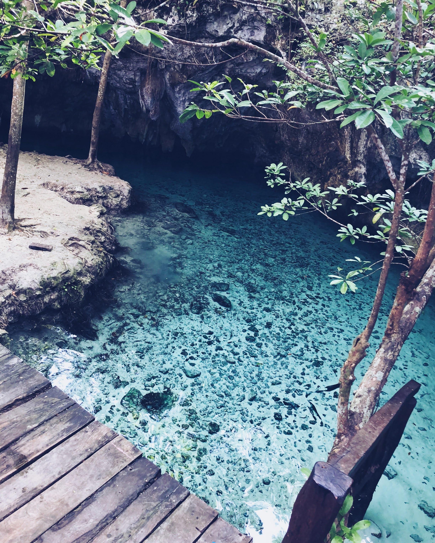 The magical Grand Cenote in Tulum