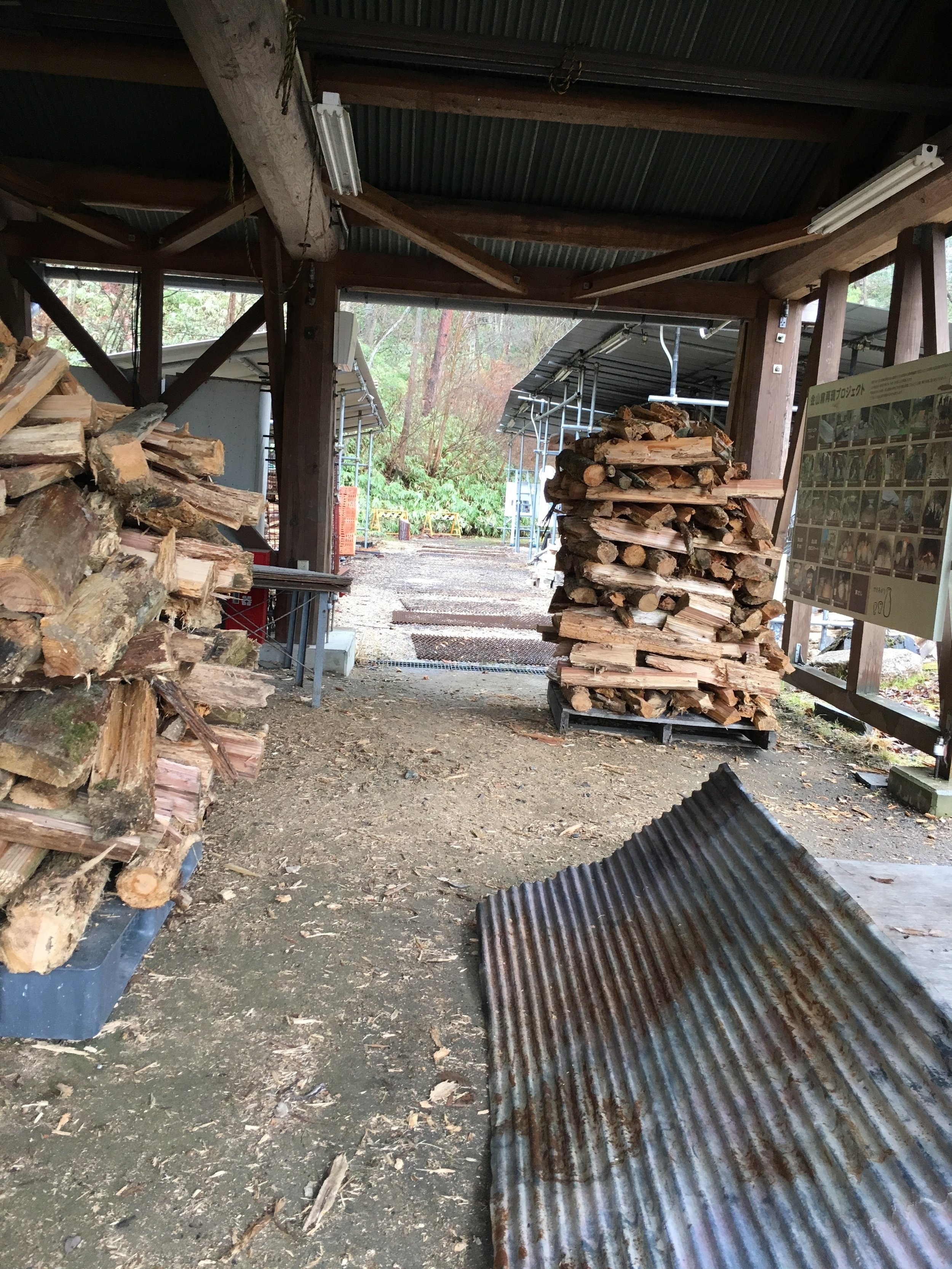 Wood kilns - I got some fresh air in the rain - the scent of cold, damp pine wood fills this space. Someone had fun stacking the wood pile!