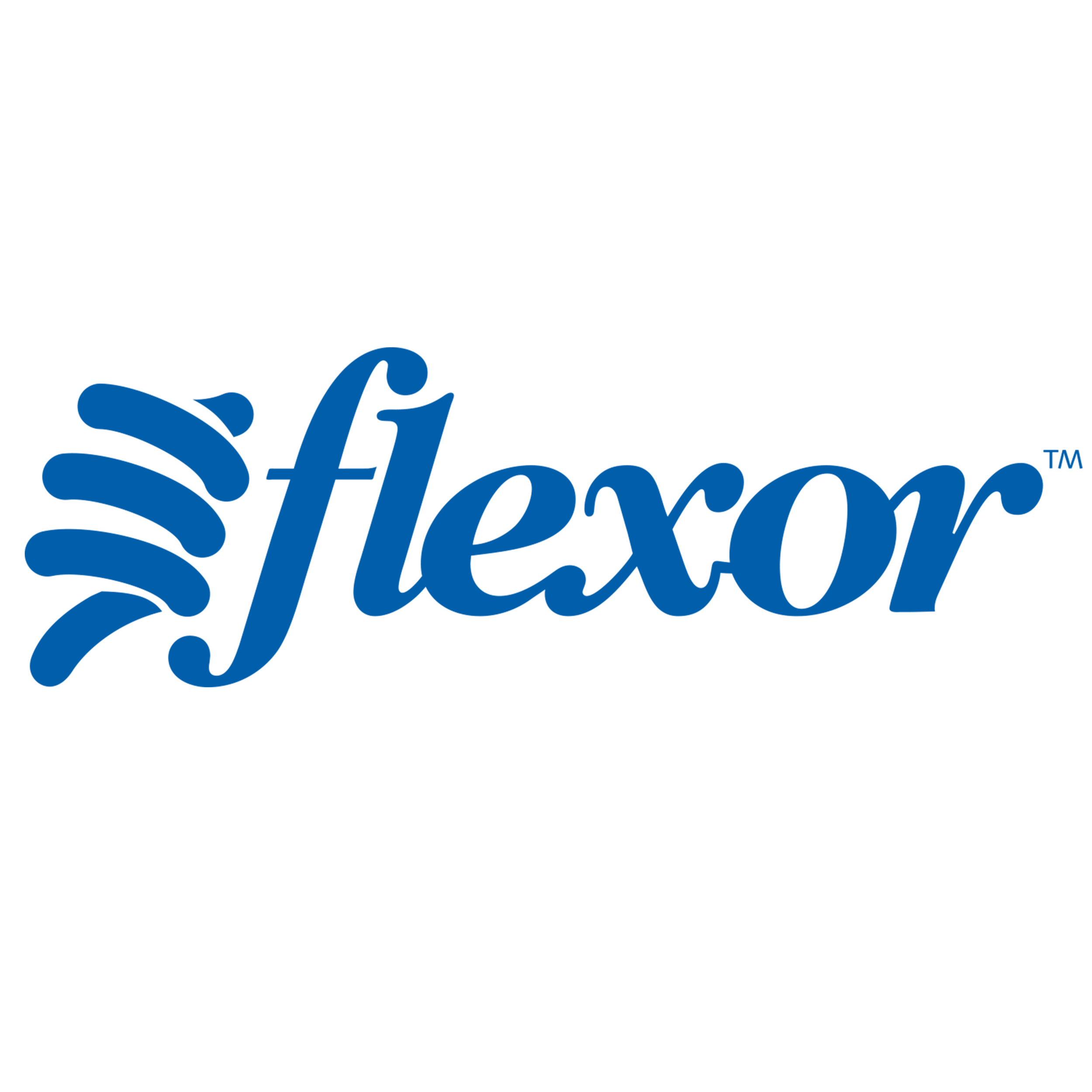 Flexor Sports Training   The name change and rebrand provided this muscle-memory method of golf training the swing it needed.