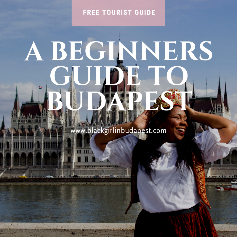 A Beginners guide to budapest