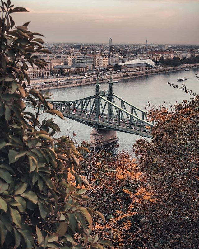 Liberty Bridge in autumn frame ( #📷 @benjaminkovesi )⁣ ⁣ Repost!