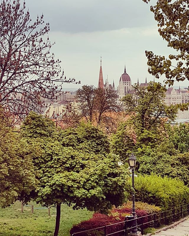 "🌳Do you need a break from my daily life? ➡THEN TAG YOUR BEST FRIEND and let him know that you like to visit Budapest with him!💚⠀⁠ .⠀⁠ I love to walk the area around the castle on Budaside with its stairways and tiny alleys. Its a perfect & peaceful place to get in Balance again.🧡🌳⠀⁠ .⠀⁠ 🐳 Find all hidden and beautiful with""MY MAP OF BUDAPEST🇭🇺"" Vol.2!⠀⁠ ⠀⁠ Explore Budapest with an eco-friendly printed & artful city map and get more than 60 outstanding tips! ⠀⁠ ig_budapest ⠀⁠ ig_hungary ⠀⁠ only_beautiful_places ⠀⁠ amazing.architecture ⠀⁠ amazing.planets ⠀⁠ citybestpics ⠀⁠ bestplaces_togo⠀⁠ citybestviews ⠀⁠ topbudapestphoto ⠀⁠ europe.vacations ⠀⁠ culturetrip⠀⁠ besteurope⠀⁠ ⠀⁠ artofdestinations⠀⁠ discover_europe_⠀⁠ worldtraveler⠀⁠ incredible_europe ⠀⁠ best.city.shots ⠀⁠ globeshotz⠀⁠ bestcitybreaks ⠀⁠ tripadvisor⠀⁠ topbudapestphoto ⠀⁠ best.europe.photos  #welovebudapest ⠀⁠ #igworldclub #ig_europa #loves_europe⠀⁠ #lovemycity #topeuropephoto⠀⁠ #Будапешт #travelpost  #traveladdicted #travelcommunity #myplace #thisisbudapest #postcardsfromtheworld #ig_street #living_europe #europe_gallery ⠀⁠ #europe_vacations #travel_overtheworld #europe #europa #ig_europe #vscohungary #citybestviews ⠀⁠ #budapeste #momentsinbudapest #mymapofbudapest⠀⁠ ⠀⁠ #kurzurlaub⠀⁠ #венгрия⠀⁠ #부다페스트 ( #📷 @mymapofbudapest )"