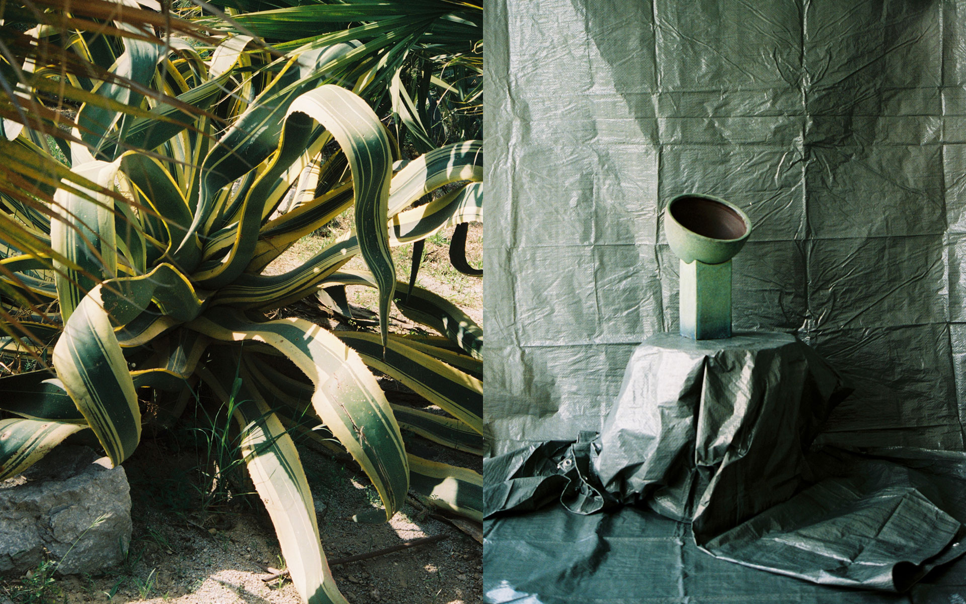 The-Aesthetic-Other-Plantage-11.jpg
