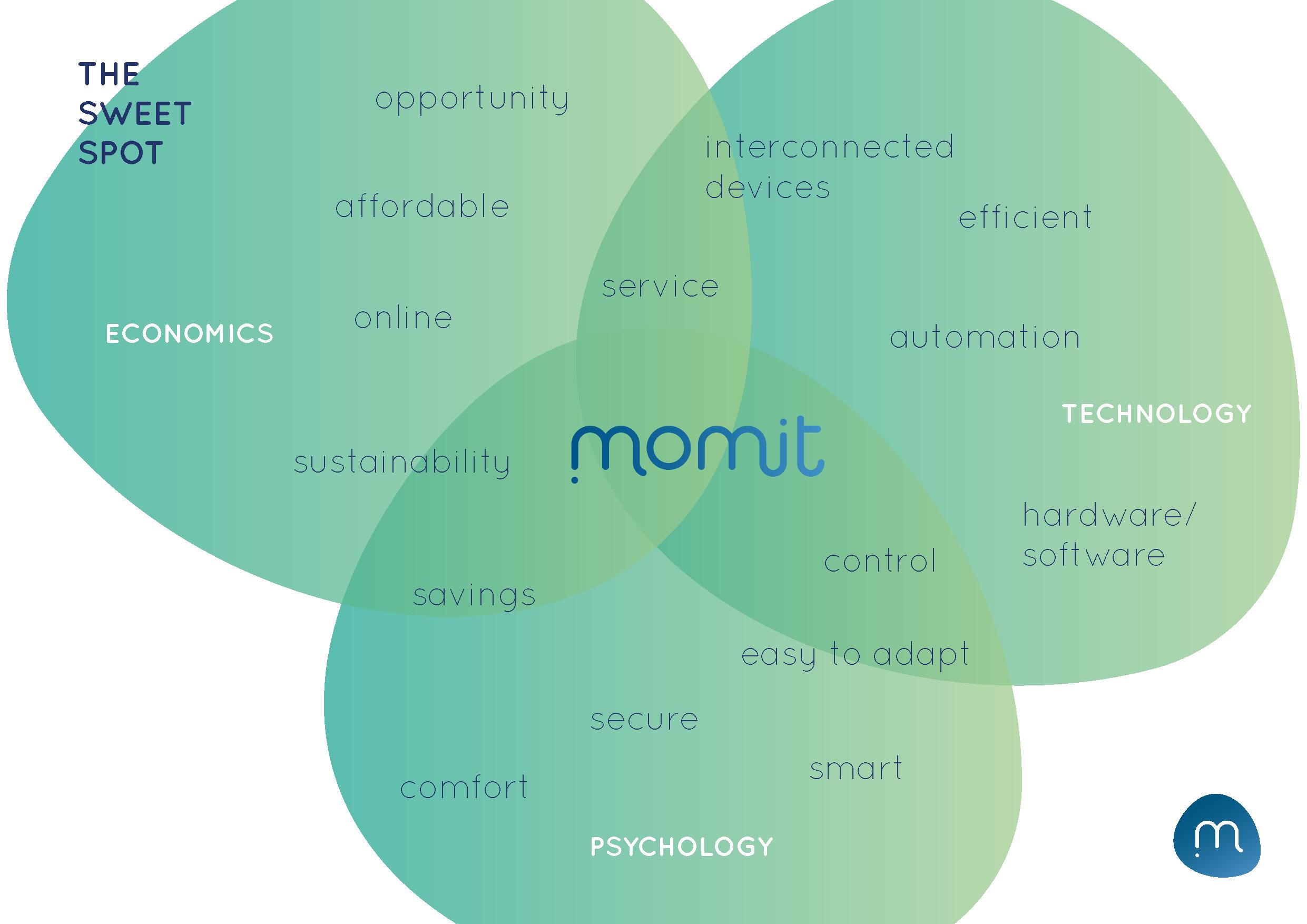 MOMIT FINAL PRESENTATION_Page_10.jpg