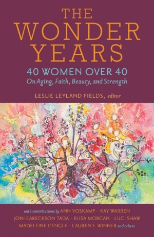 the wonder years: 40 women over 40 on aging, faith, beauty and strength  (kregel, 2018)