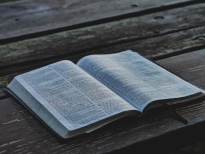 bible pic.jpg