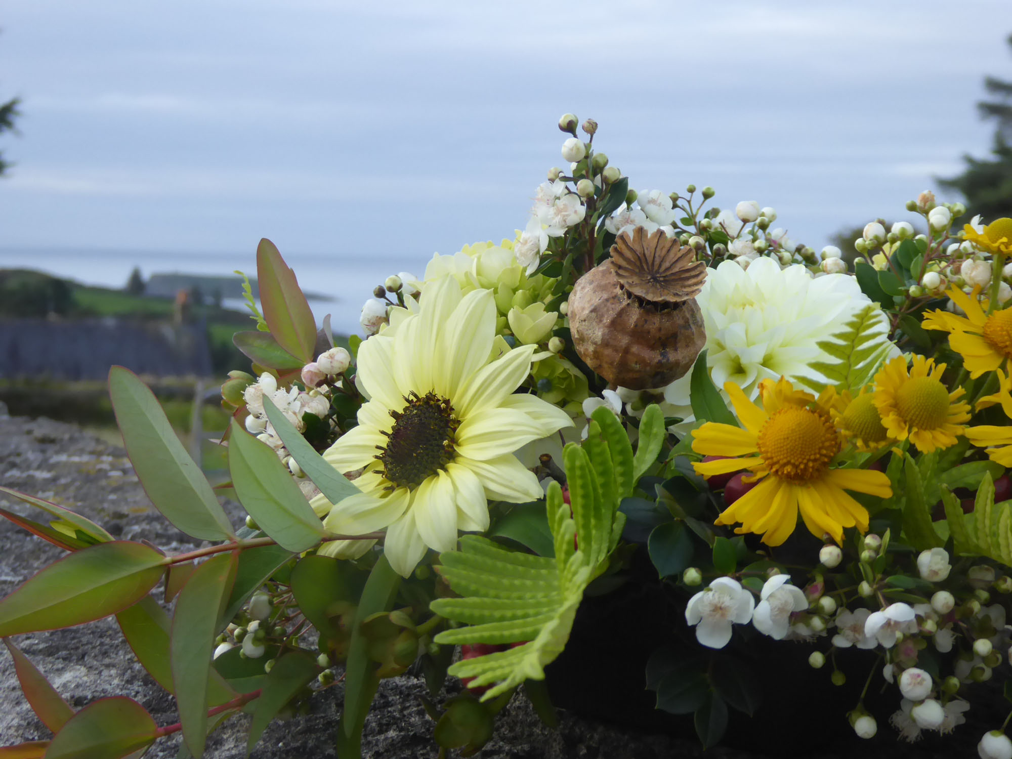sunflowers funeral tribute.JPG