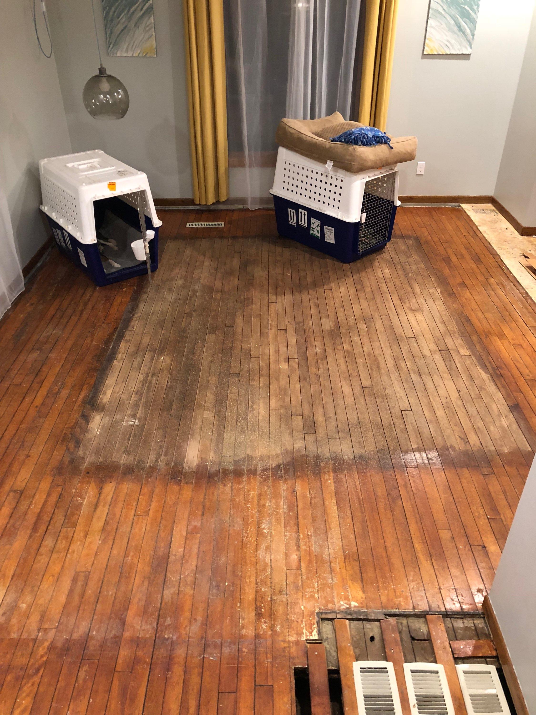 Buffing Vs Sanding Duane S Floor Service Inc