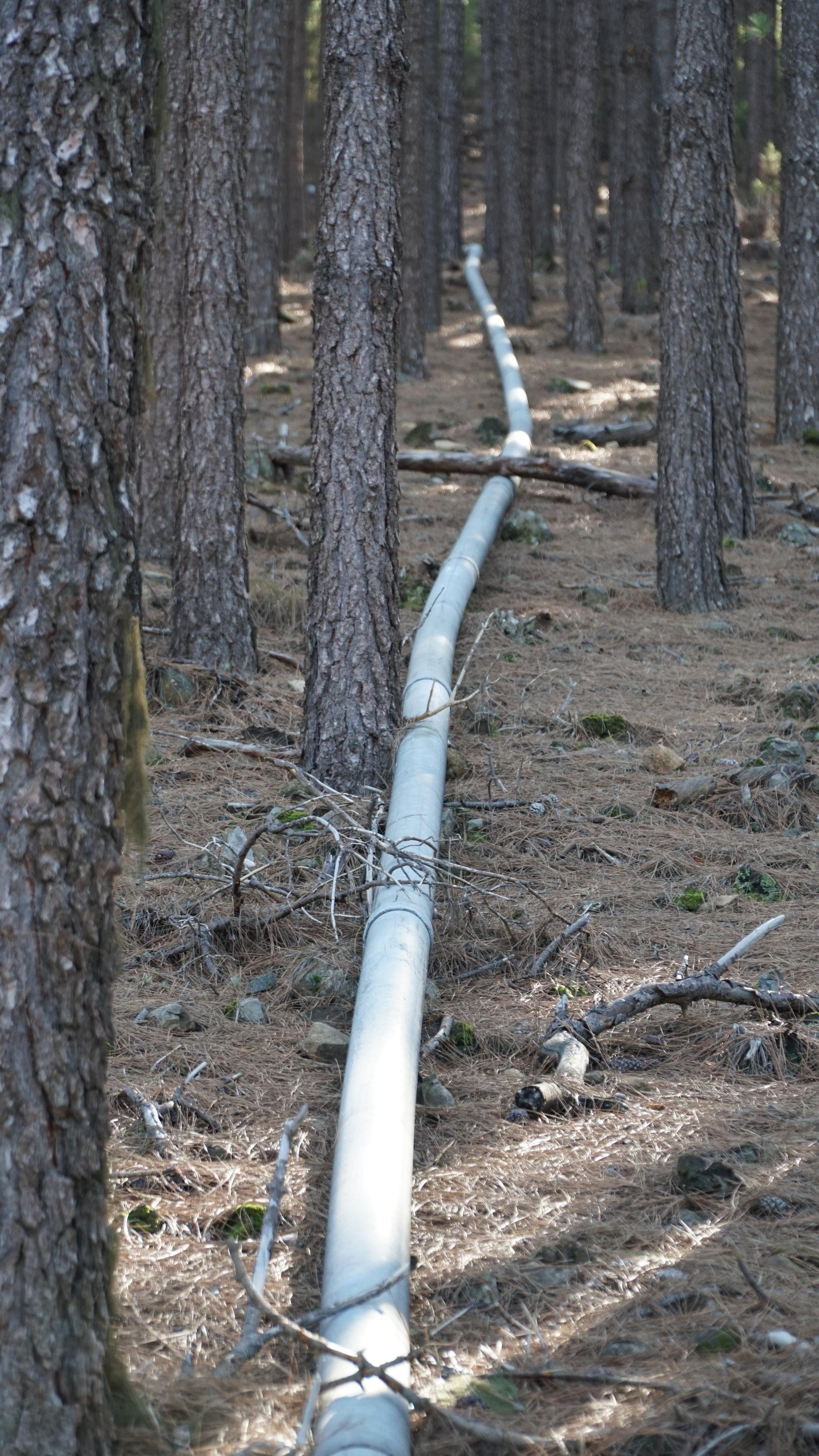 Mange af disse vandrør lå igennem skovene
