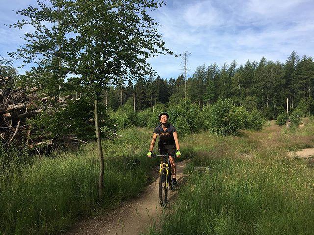 Morgen-mountainbike med Line i den bagende sol - så bliver det lidt mindre træls at bruge resten af dagen indenfor på job. ☀️ - #mountainbike #hareskoven #hareskovenmtb