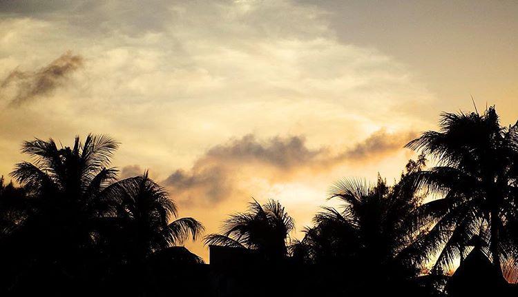 Playa Del Carmen 3.jpg