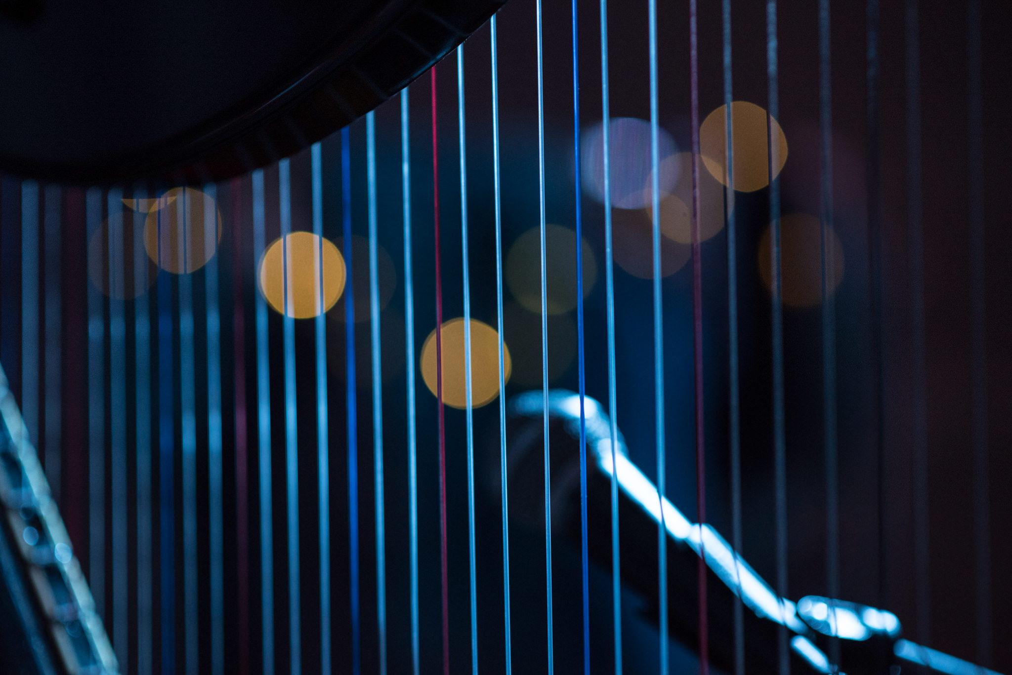 katherine-harrison-harp-live.jpg