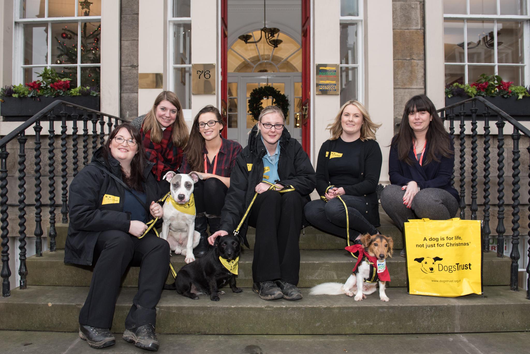 Dogs Trust visit to People's Postcode Lottery - Edinburgh - 15 December 2015 ©Julie Broadfoot - www.juliebee.co.uk