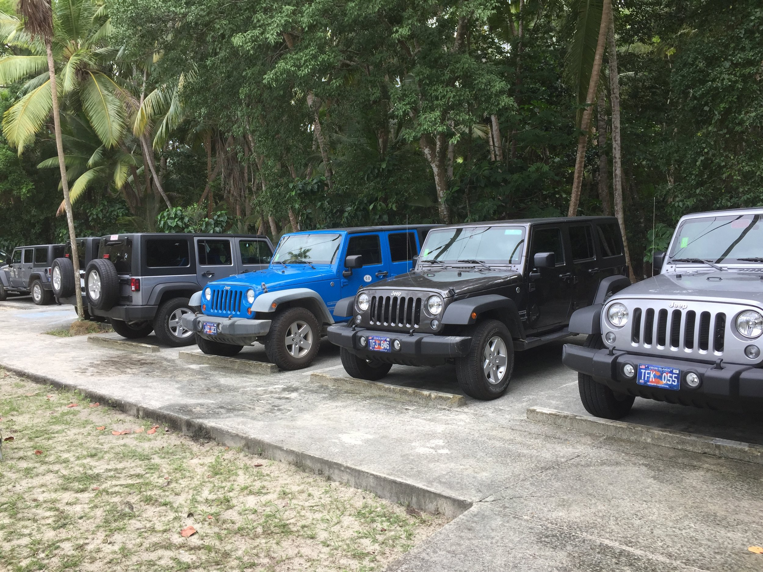 A row of Jeeps. Ours is second from the right.
