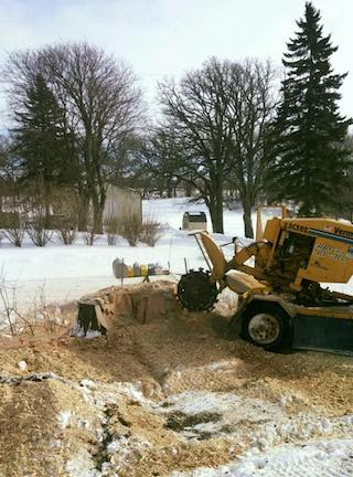 winter-stump-grinding.jpg