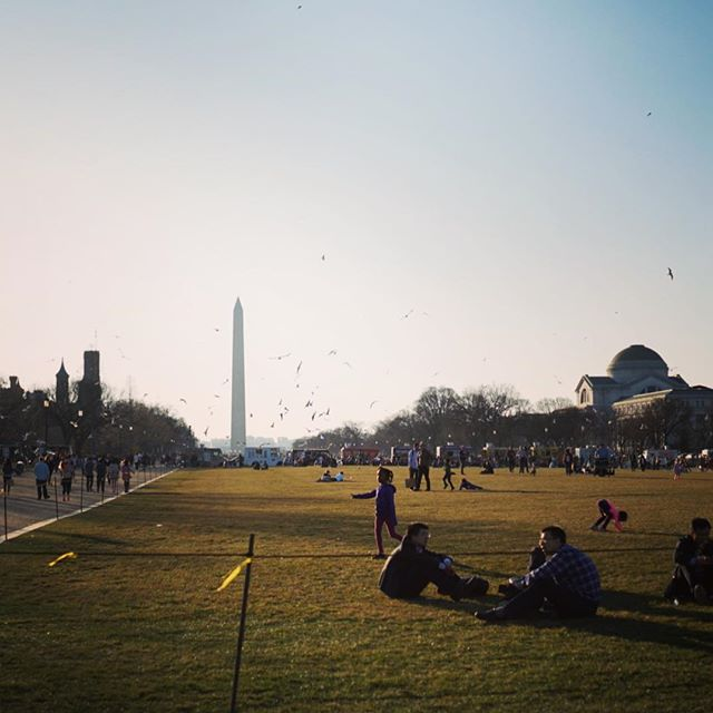 Another gorgeous day in DC; seriously amazing weather for February! #dc #travelgram #lastday #backtoreality #nationalmall